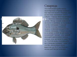Смарида Эсту небольшую рыбу отряда окунеобразных в Крыму называют еще морским