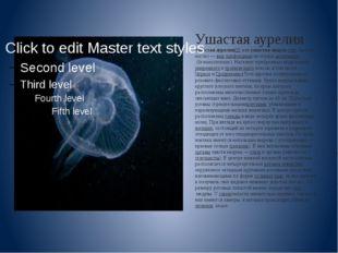 Ушастая аурелия Ушастая аурелия[2]илиушастая медуза(лат.Aurelia aurita)—