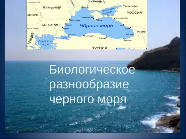 Биологическое разнообразие черного моря Биологическое разнообразие черного м...