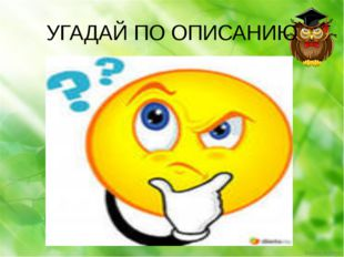 УГАДАЙ ПО ОПИСАНИЮ Ekaterina050466