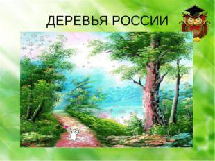 ДЕРЕВЬЯ РОССИИ Ekaterina050466