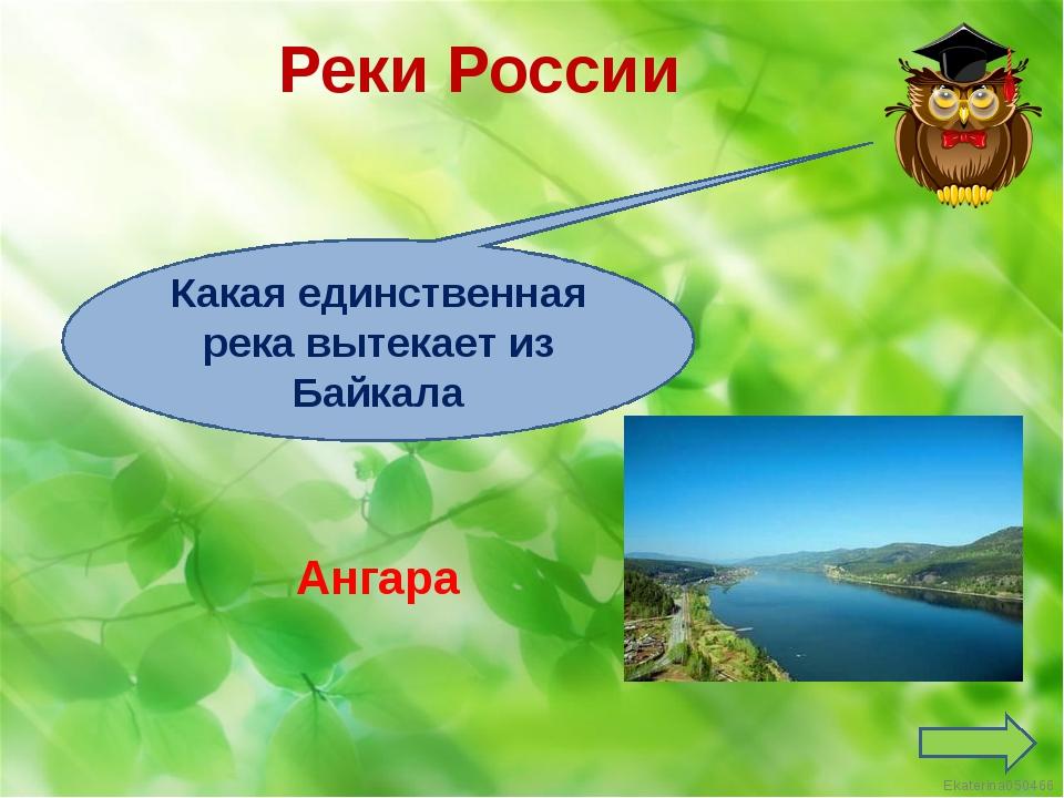 Реки России Ангара Какая единственная река вытекает из Байкала Ekaterina050466