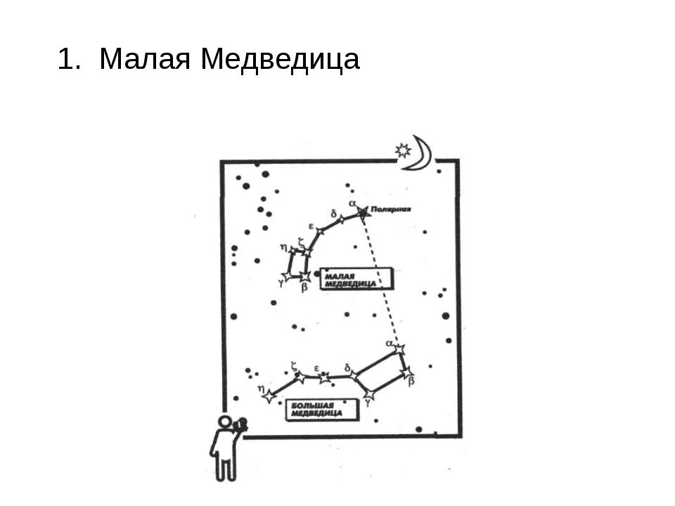 1. Малая Медведица