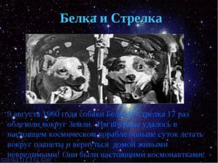 Белка и Стрелка 9 августа 1960 года собаки Белка и Стрелка 17 раз облетели во