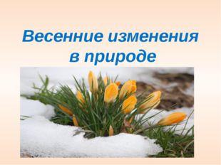 Весенние изменения  в природе