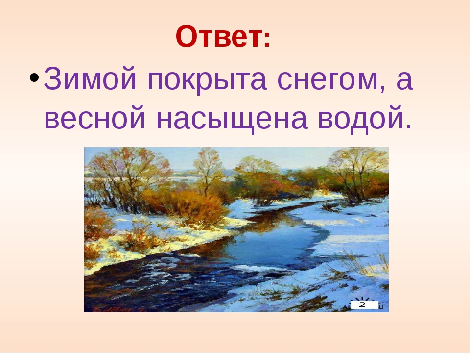 Ответ: Зимой покрыта снегом, а весной насыщена водой.