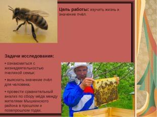 Цель работы: изучить жизнь и значение пчёл. Задачи исследования: ознакомиться