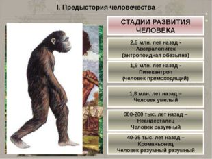 I. Предыстория человечества СТАДИИ РАЗВИТИЯ ЧЕЛОВЕКА 2,5 млн. лет назад - Авс