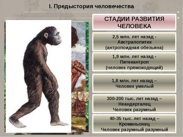 I. Предыстория человечества СТАДИИ РАЗВИТИЯ ЧЕЛОВЕКА 2,5 млн. лет назад - Авс...
