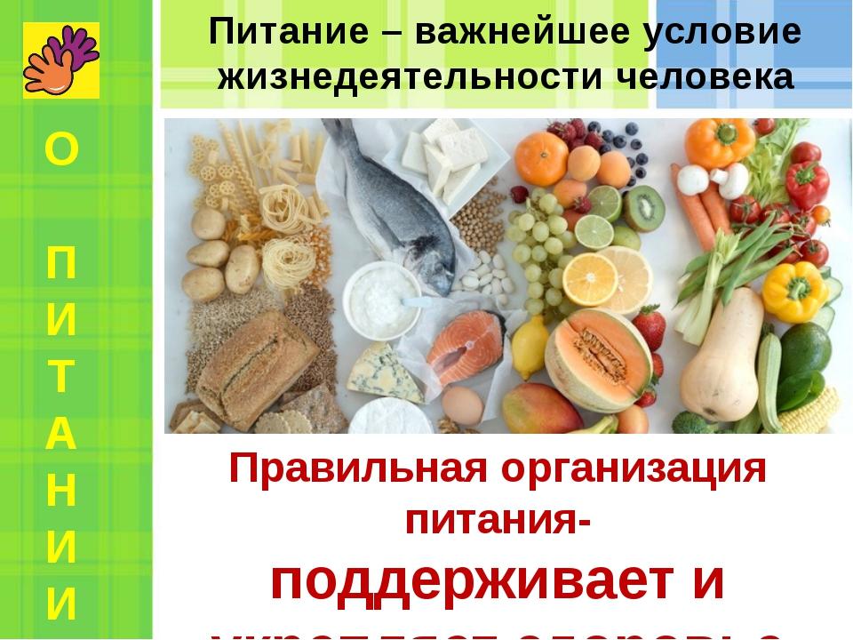 Питание – важнейшее условие жизнедеятельности человека Правильная организация...