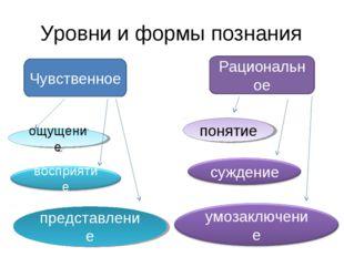 Уровни и формы познания Чувственное Рациональное ощущение представление понятие