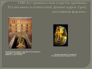 Погребальная камера с саркофагом Тутанхамона. Саркофаг – массивный гроб. Фар