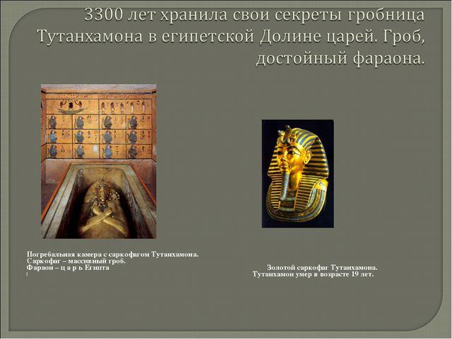 Погребальная камера с саркофагом Тутанхамона. Саркофаг – массивный гроб. Фар...