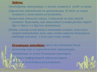 Задачи: 1)подобрать литературу о жизни хомяков и уходе за ними; 2)провести н