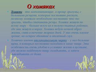 О хомяках Хомяки - это млекопитающие, а проще грызуны, с большими резцами, ко