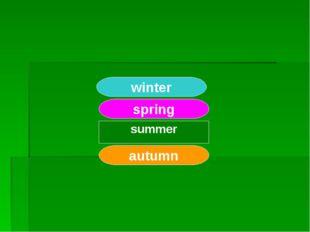 winter summer spring autumn