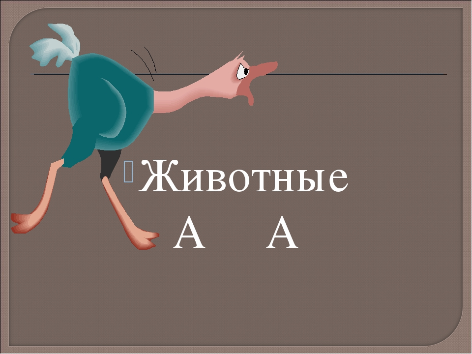 Животные А А
