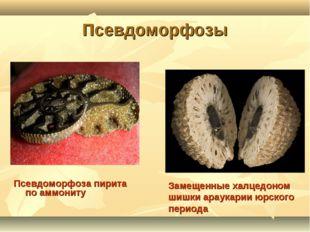 Псевдоморфозы Псевдоморфоза пирита по аммониту Замещенные халцедоном шишки ар