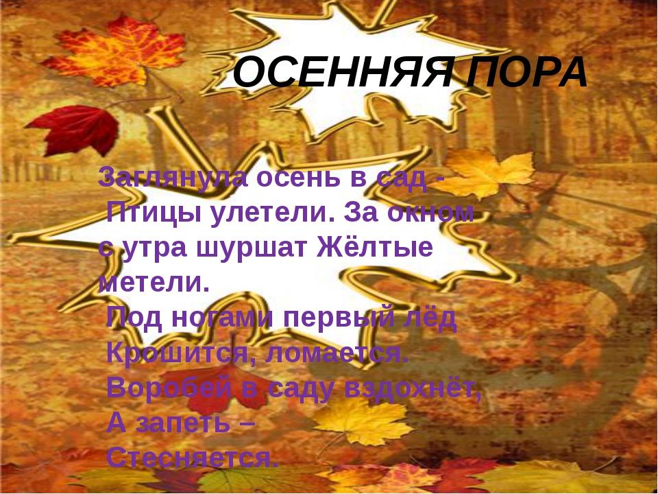 ОСЕННЯЯ ПОРА Заглянула осень в сад - Птицы улетели. За окном с утра шуршат Ж...