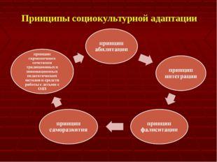 Принципы социокультурной адаптации