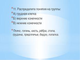 11. Распределите понятия на группы: А) грудная клетка Б) верхние конечности