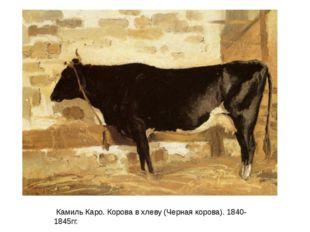 Камиль Каро. Корова в хлеву (Черная корова). 1840-1845гг.