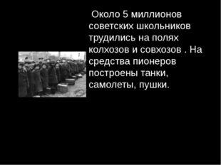 Около 5 миллионов советских школьников трудились на полях колхозов и совхозо