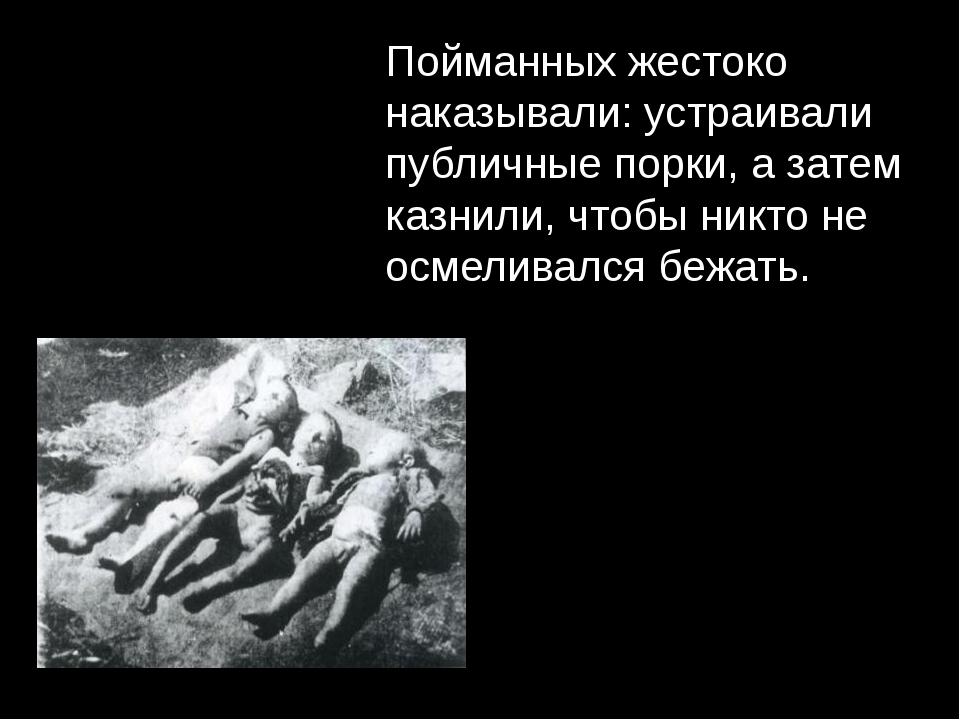 Пойманных жестоко наказывали: устраивали публичные порки, а затем казнили, чт...