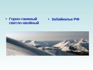 Горно-таежный светло-хвойный Забайкалье РФ