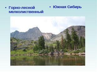 Горно-лесной мелколиственный Южная Сибирь