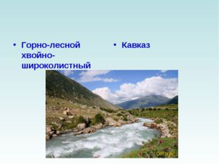 Горно-лесной хвойно-широколистный Кавказ