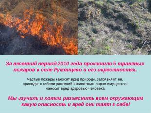 За весенний период 2010 года произошло 5 травяных пожаров в селе Румянцево и