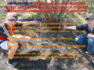 Задачи исследования: Изучить причины возникновения травяных пожаров, причины