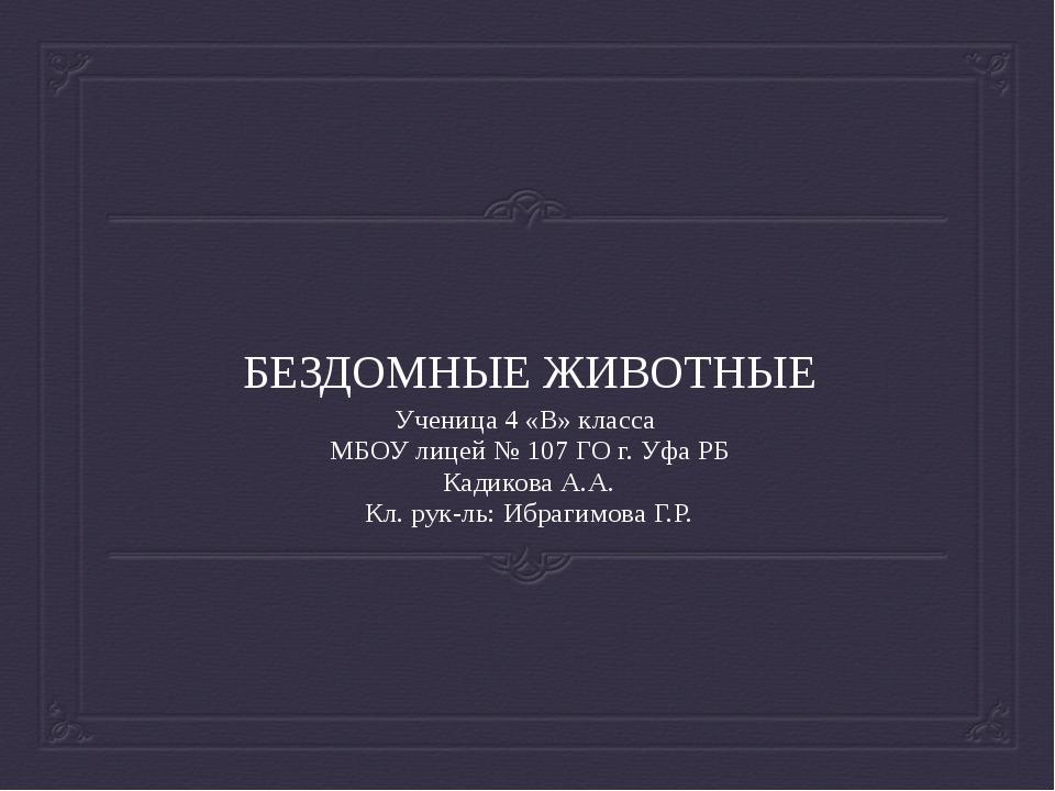 БЕЗДОМНЫЕ ЖИВОТНЫЕ Ученица 4 «В» класса МБОУ лицей № 107 ГО г. Уфа РБ Кадиков...
