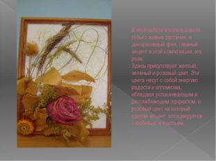 В этой работе я использовала только живые растения, и декоративный фон, главн