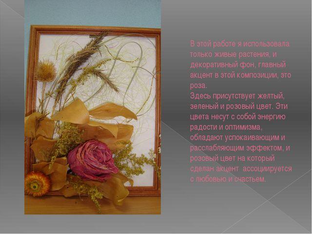 В этой работе я использовала только живые растения, и декоративный фон, главн...