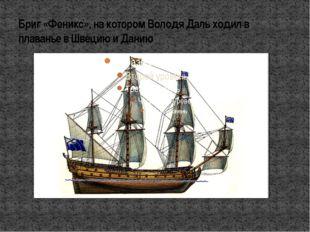 Бриг «Феникс», на котором Володя Даль ходил в плаванье в Швецию и Данию