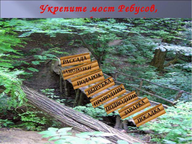 Укрепите мост Ребусов, расшифруйте слова РАССАДА ЗАМОРОЗКИ ПОДАРОК ВЫРУБКА ПР...