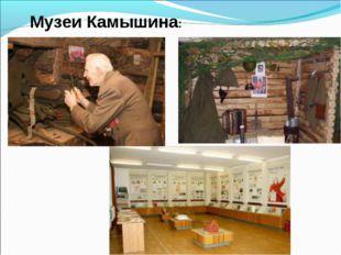 Музеи Камышина: