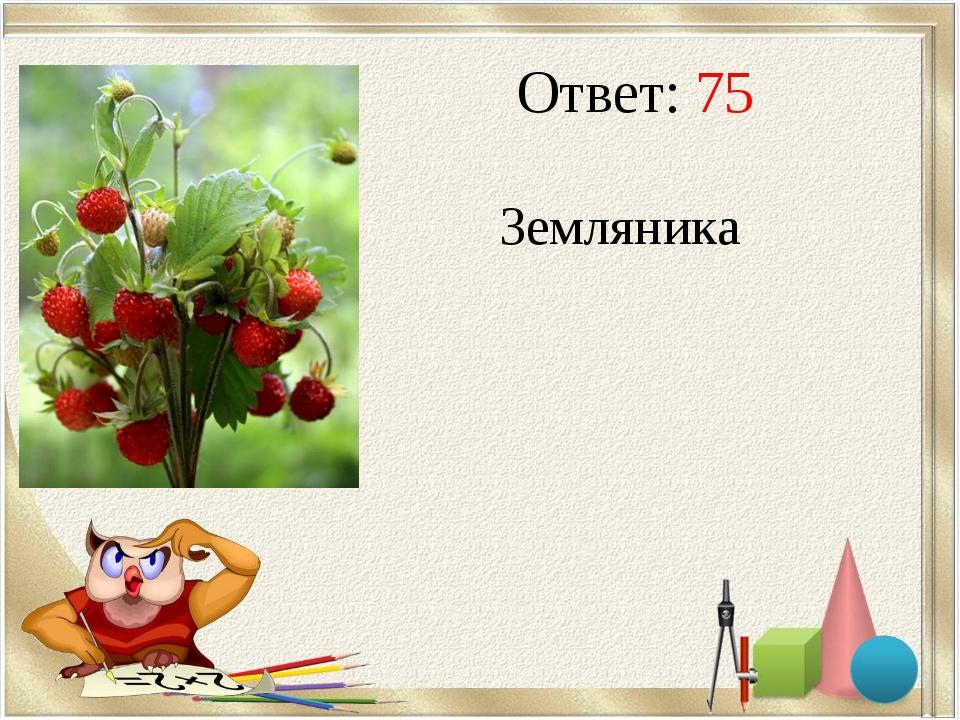 Ответ: 75 Земляника