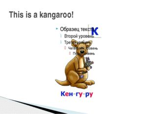This is a kangaroo!