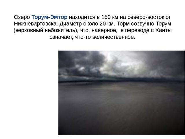 Озеро Торум-Эмтор находится в 150 км на северо-восток от Нижневартовска. Диам...