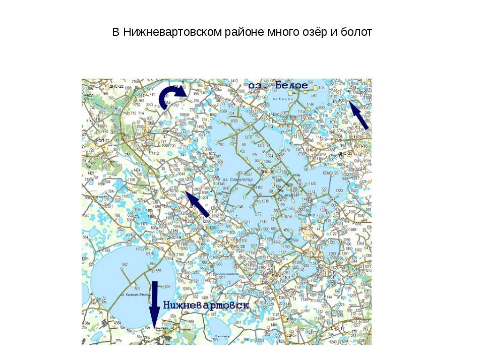 В Нижневартовском районе много озёр и болот