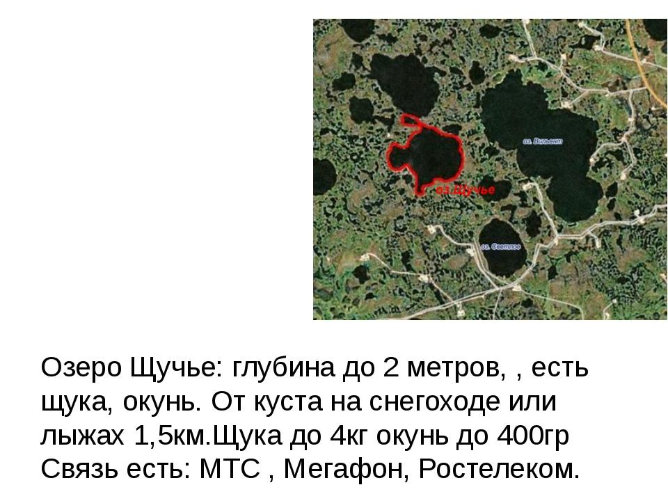 Озеро Щучье: глубина до 2 метров, , есть щука, окунь. От куста на снегоходе...