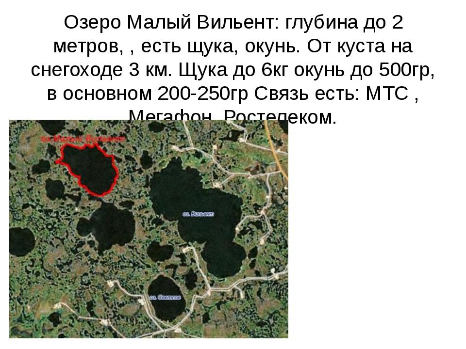 Озеро Малый Вильент: глубина до 2 метров, , есть щука, окунь. От куста на сне...