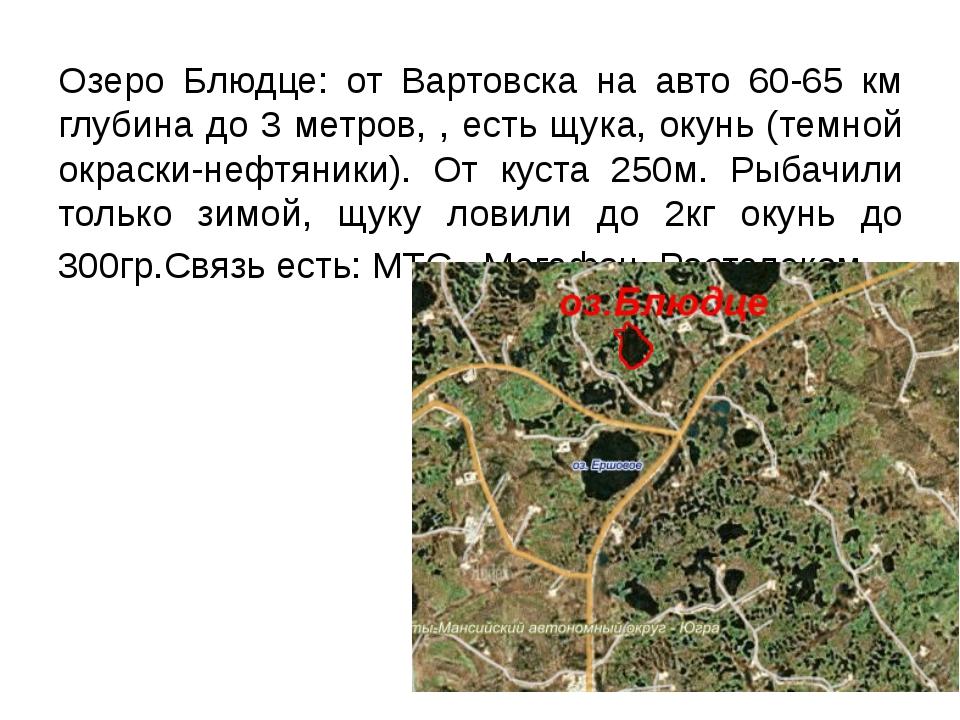 Озеро Блюдце: от Вартовска на авто 60-65 км глубина до 3 метров, , есть щука,...