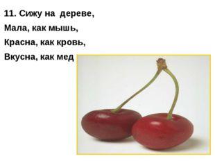 11. Сижу на дереве, Мала, как мышь, Красна, как кровь, Вкусна, как мед