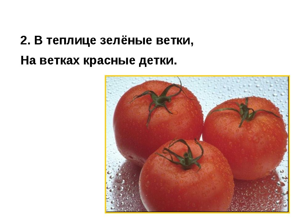 2. В теплице зелёные ветки, На ветках красные детки.