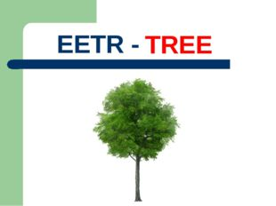 EETR - TREE