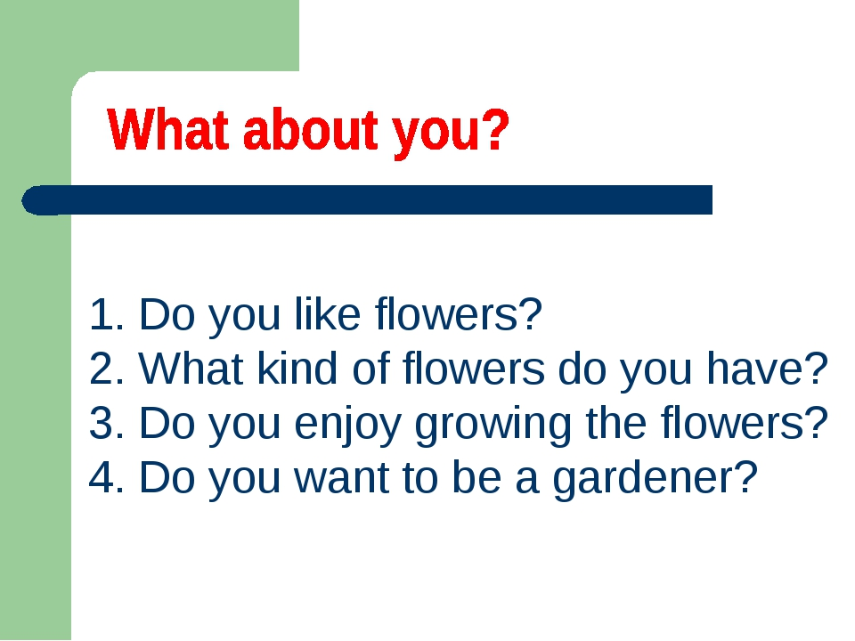 1. Do you like flowers? 2. What kind of flowers do you have? 3. Do you enjoy...